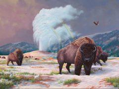 Spirit Of Yellowstone